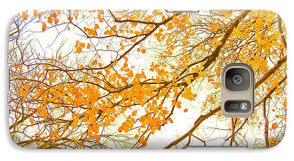 Featured Images Galaxy S7 Case - Autumn Leaves by Az Jackson