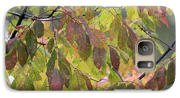 Galaxy Case featuring the photograph Autumn Leaves by Doris Potter