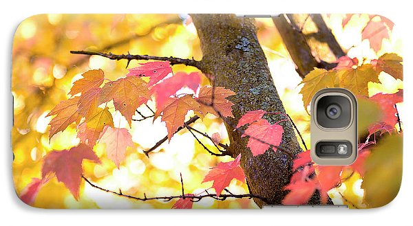 Galaxy Case featuring the photograph Autumn Leaves by Ivy Ho
