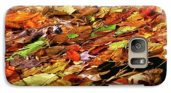 Galaxy Case featuring the photograph Autumn Leaves by Mitch Cat