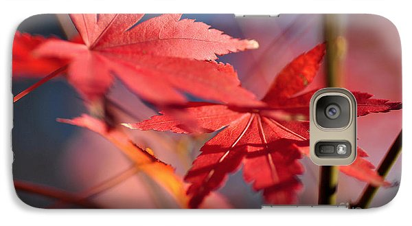 Autumn Maple Galaxy S7 Case by Kaye Menner
