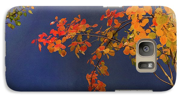Galaxy Case featuring the photograph Autumn Matinee by Theresa Tahara