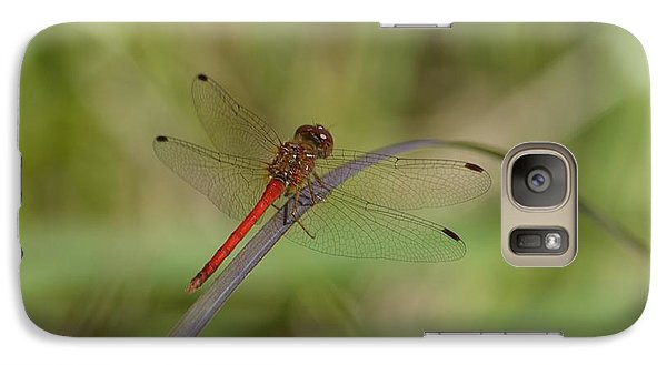 Galaxy Case featuring the photograph Autumn Meadowhawk by Randy Bodkins