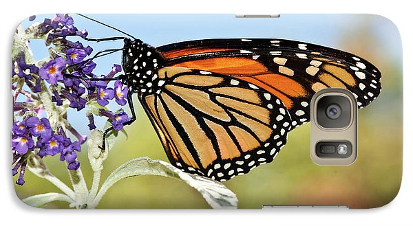 Galaxy Case featuring the photograph Autumn Monarch Butterfly 2016 by Lara Ellis