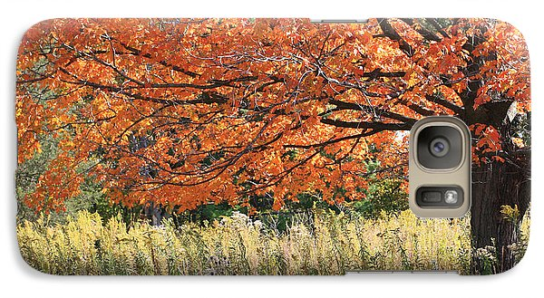Galaxy Case featuring the photograph Autumn Red   by Paula Guttilla
