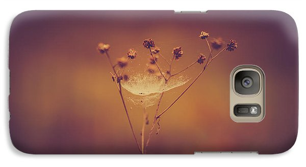 Autumn Web Galaxy S7 Case