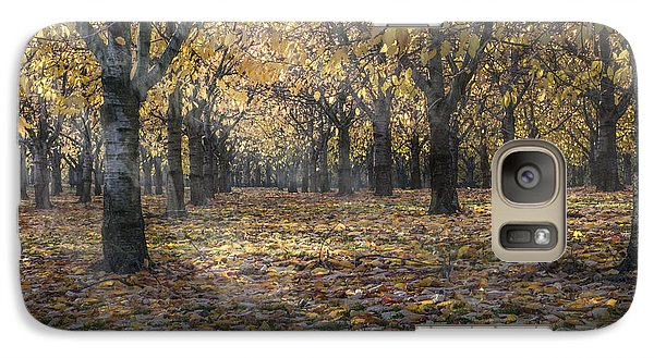 Galaxy Case featuring the photograph Autumns Strokes by Bruno Santoro