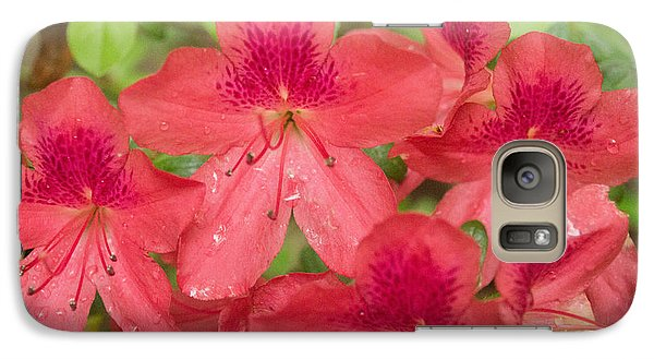 Galaxy Case featuring the photograph Azalea Blossoms by Linda Geiger