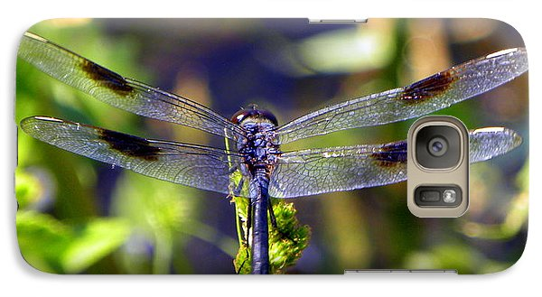 Galaxy Case featuring the photograph Azure Dragonfly by Terri Mills