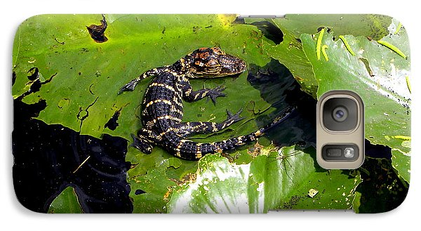Galaxy Case featuring the photograph Baby Alligator by Terri Mills