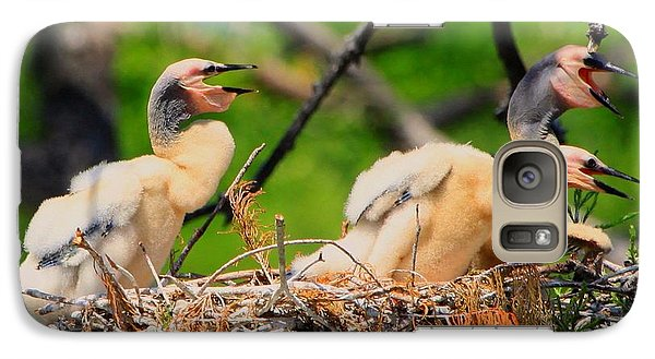 Galaxy Case featuring the photograph Baby Anhinga Chicks by Barbara Bowen