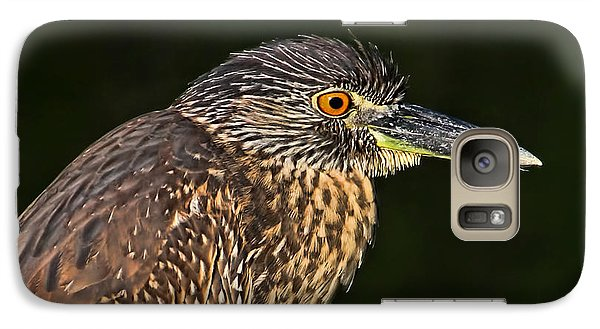 Galaxy Case featuring the photograph Baby Face - Yellow-crowned Night Heron  by HH Photography of Florida