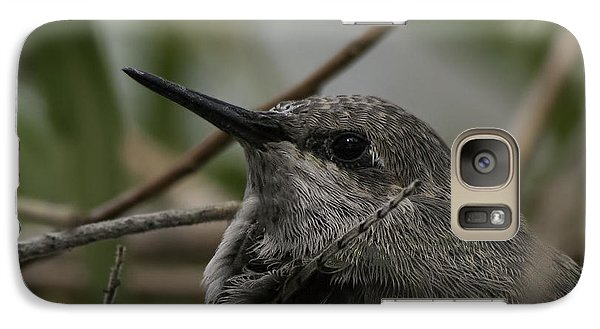 Baby Humming Bird Galaxy S7 Case by Lynn Geoffroy