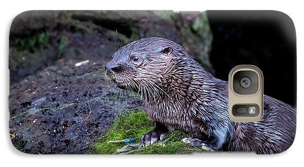 Galaxy Case featuring the photograph Baby Otter by Kelly Marquardt