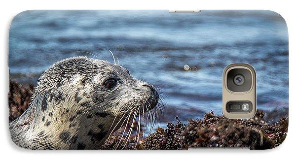 Baby Seal Galaxy S7 Case