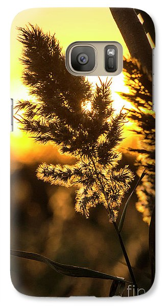 Galaxy Case featuring the photograph Backlit By The Sunset by Zawhaus Photography