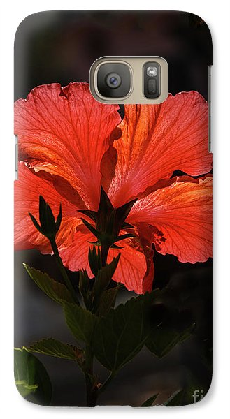 Galaxy Case featuring the photograph Backlit Hibiscus by Robert Bales