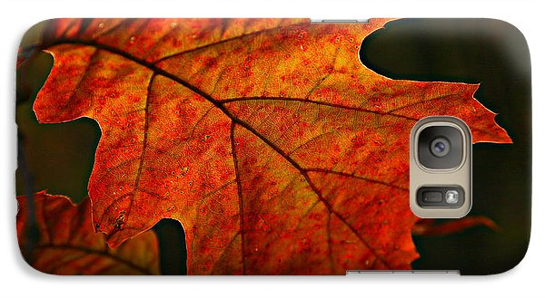 Galaxy Case featuring the photograph Backlit Leaf by Shari Jardina