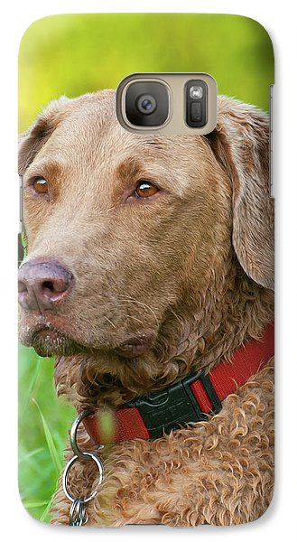 Galaxy Case featuring the photograph Bailee 1149 by Guy Whiteley