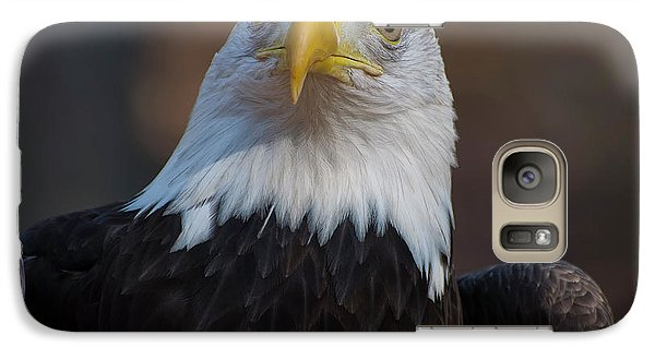 Bald Eagle Looking Right Galaxy S7 Case