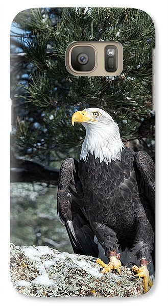 Bald Eagle Ready For Flight Galaxy S7 Case