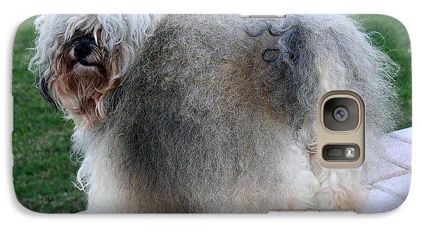Galaxy Case featuring the photograph ball of fur Havanese dog by Sally Weigand