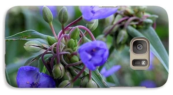 Galaxy Case featuring the photograph Balmy Blue by Michiale Schneider
