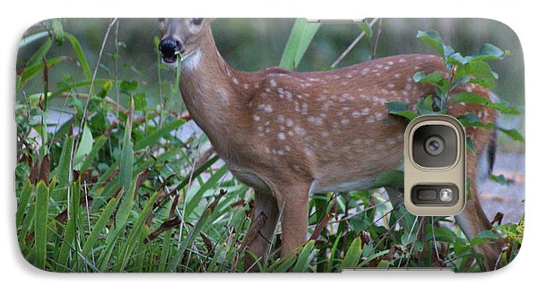 Galaxy Case featuring the photograph Bambi by Rick Friedle