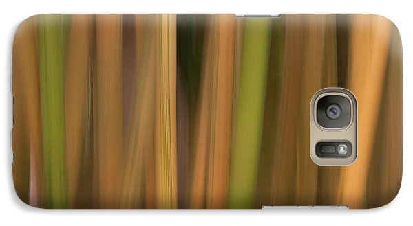 Galaxy Case featuring the photograph Bamboo Abstract by Carolyn Dalessandro