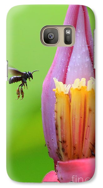Galaxy Case featuring the photograph Banana Pollinator   by Irina Hays