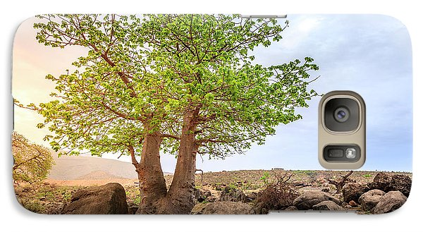 Galaxy Case featuring the photograph Baobab Tree by Alexey Stiop