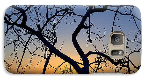 Galaxy Case featuring the photograph Barren Tree At Sunset by Lori Seaman