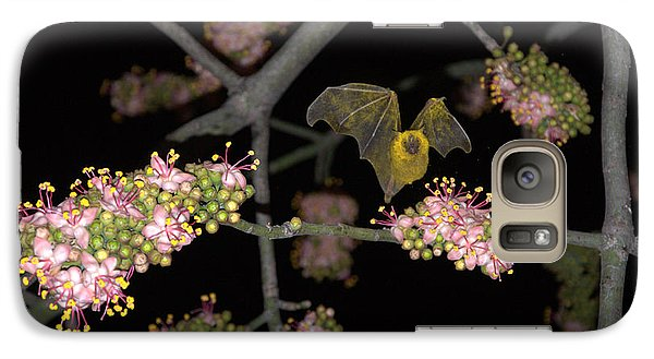 Galaxy Case featuring the photograph Bat by Jim Walls PhotoArtist
