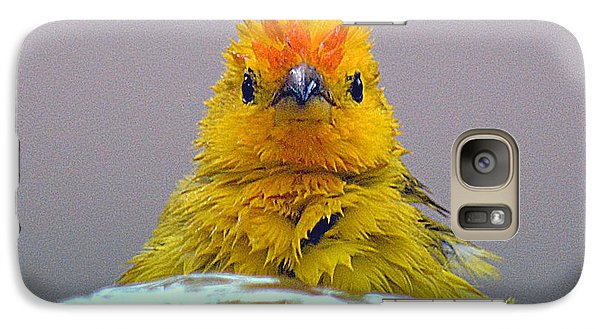 Galaxy Case featuring the photograph Bath Time Finch by Lori Seaman
