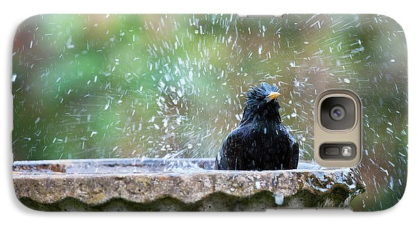 Starlings Galaxy S7 Case - Bath Time by Tim Gainey