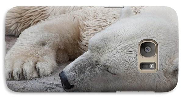 Galaxy Case featuring the photograph Bear Nap by Cindy Haggerty