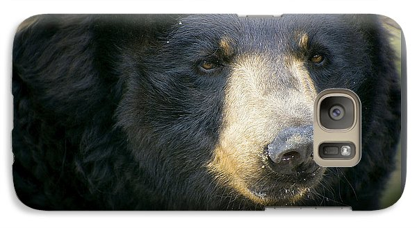 Galaxy Case featuring the photograph Bear With Me by Cheri McEachin