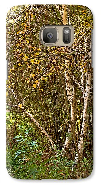 Galaxy Case featuring the photograph Bearch by Viktor Savchenko