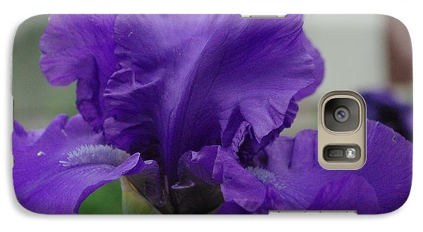 Galaxy Case featuring the photograph Bearded Blue Iris by Robyn Stacey