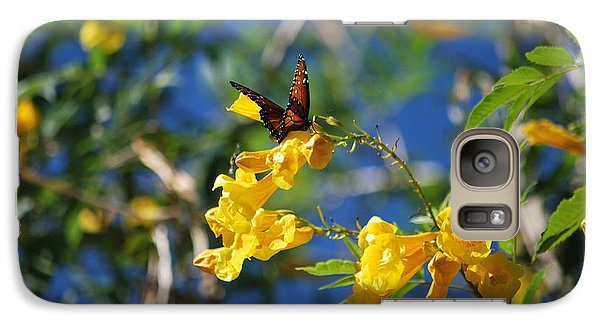 Galaxy Case featuring the photograph Beautiful Butterfly by Donna Greene