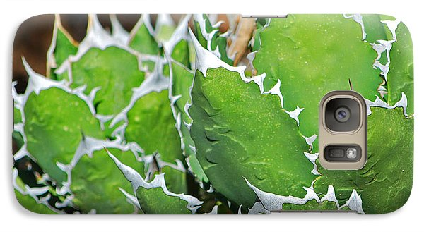 Galaxy Case featuring the photograph Beautiful Cactus by Donna Greene