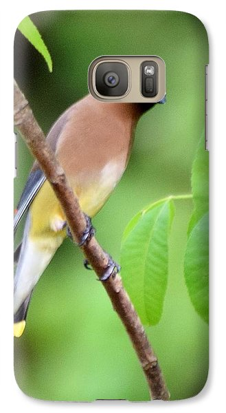 Beautiful Cedar Wax Wing  Galaxy Case by Sheri McLeroy