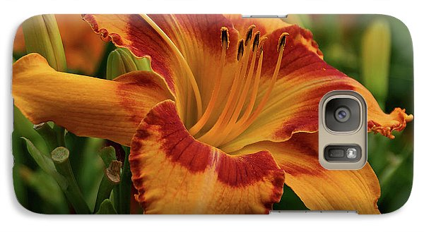 Galaxy Case featuring the photograph Beautiful Daylily by Sandy Keeton