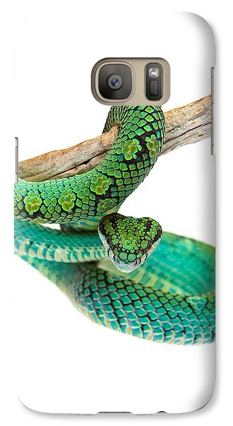 Beautiful Sri Lankan Palm Viper Galaxy S7 Case