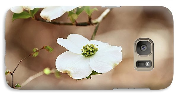 Galaxy Case featuring the photograph Beautiful White Flowering Dogwood Blossoms by Stephanie Frey