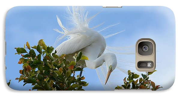 Galaxy Case featuring the photograph Beauty In The Treetop by Fraida Gutovich