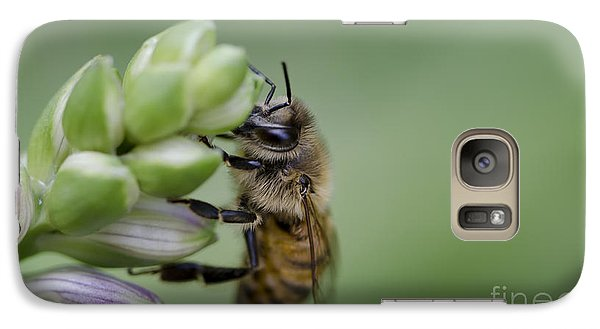 Galaxy Case featuring the photograph Busy Bee by Andrea Silies
