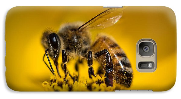 Bee Enjoys Collecting Pollen From Yellow Coreopsis Galaxy S7 Case