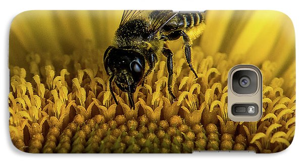 Galaxy Case featuring the photograph Bee In A Sunflower by Paul Freidlund