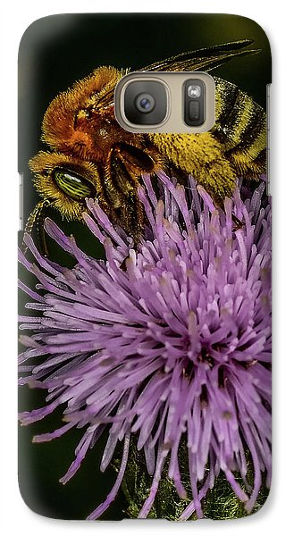 Galaxy Case featuring the photograph Bee On A Thistle by Paul Freidlund